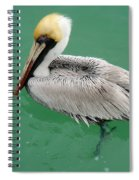 Pelican's Cove Spiral Notebook