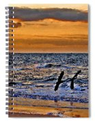 Pelicans Crusing The Coast Spiral Notebook