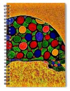 Pencil Sketch And Water Color Turtle Of The Rainbow Spiral Notebook