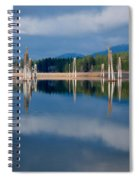 Pend Oreille River Pilings Spiral Notebook