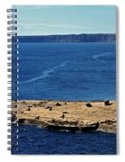 Peninsula De Valdez Spiral Notebook