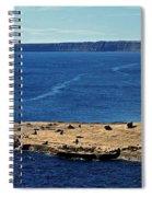 Peninsula De Valdez Spiral Notebook
