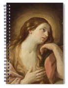 Penitent Mary Magdalene Spiral Notebook