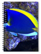 Blue Tang Fish  Spiral Notebook