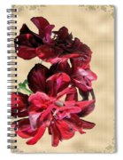 Penny Postcard Spiral Notebook