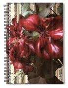 Penny Postcard Striped Spiral Notebook