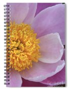 Peonie Yellow Center Spiral Notebook