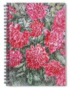Peonies Love Spiral Notebook