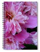 Peonies Under The Weather Spiral Notebook