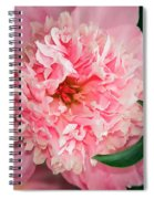 Peony And Bud Spiral Notebook