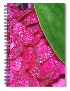 Peony And Leaf Spiral Notebook