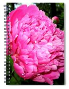 Peony And Raindrops Spiral Notebook