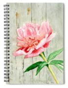 Peony At The Fence Spiral Notebook