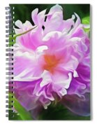 Peony Cluster 7 Spiral Notebook