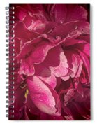 Peony In The Rain Spiral Notebook