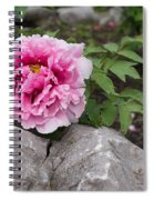 Peony On The Rocks - The Marvels Of Spring Spiral Notebook