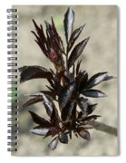 Peony Sprouts Spiral Notebook