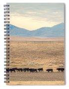 People's Creek Push Spiral Notebook