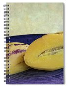 Pepino Melon Spiral Notebook