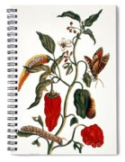 Pepper Plant Spiral Notebook