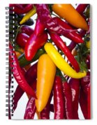 Peppers - Farmers Market - Madison - Wisconsin Spiral Notebook