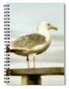 Perch By The Water Spiral Notebook
