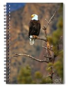 Perched At Smith Rock Spiral Notebook