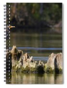 Perched Cormorant Spiral Notebook