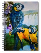 Perched In Paradise Spiral Notebook