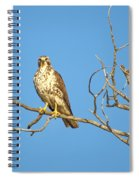 Perched Poser Spiral Notebook