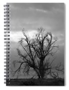 Perched Spiral Notebook