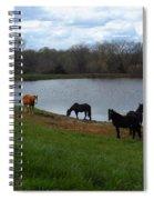 Percheron Pasture Spiral Notebook