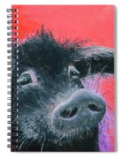 Percival The Black Pig Spiral Notebook