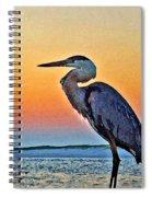Perdido Crain Spiral Notebook