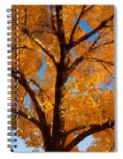Perfect Autumn Day With Blue Skies Spiral Notebook