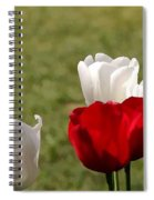 Perfect Droplets Spiral Notebook