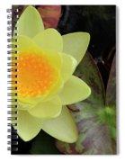 Perfect Flower Spiral Notebook