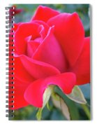 Perfect Form - Knock Out Rose Spiral Notebook