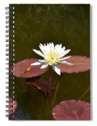 Perfect Lily  Spiral Notebook
