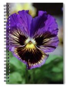 Perfect Pansy  Spiral Notebook