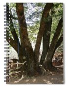 Perfect Picnic Tree Spiral Notebook