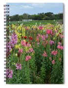 Perfect Picture Spiral Notebook