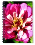 Perfect Pink Spiral Notebook