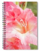 Perfect Pink Canna Lily Spiral Notebook