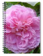 Perfect Pink Rose Spiral Notebook