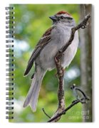 Perfect Profile - Chipping Sparrow Spiral Notebook
