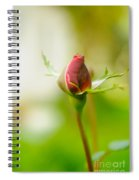 Perfect Red Rose Bud  Spiral Notebook