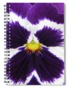 Perfectly Pansy 01 Spiral Notebook