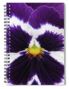 Perfectly Pansy 02 Spiral Notebook