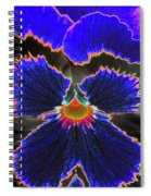 Perfectly Pansy 02 - Photopower Spiral Notebook